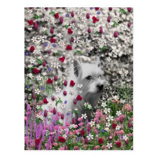 Violeta en flores - perro blanco de Westie Postal