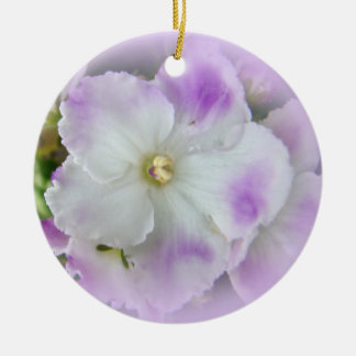 Violetas africanas de lujo púrpuras y blancas ornamento para reyes magos