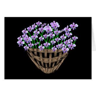 Violetas dulces tarjetas