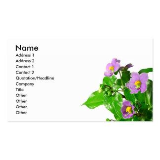 Violetas persas tarjetas de visita
