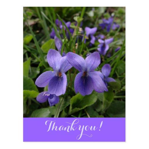 violetas tarjetas postales