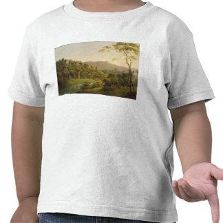 Visión en Matlock Dale, mirando hacia la roca Camiseta