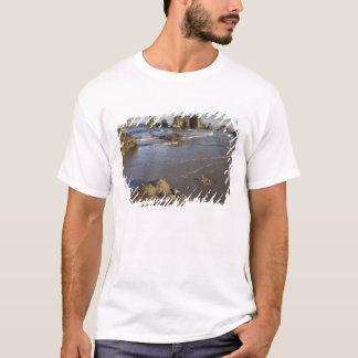 Visiónes costeras, Bandon, Oregon Camiseta
