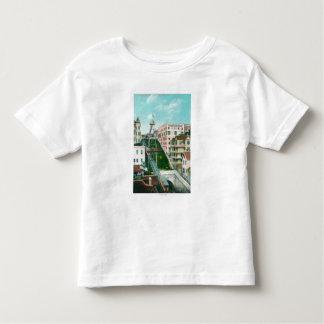 Vista aérea de la carretilla del vuelo de los camiseta de niño