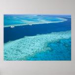 Vista aérea de la gran barrera de coral por posters