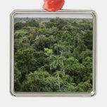 Vista aérea de la selva tropical del Amazonas Adorno De Reyes