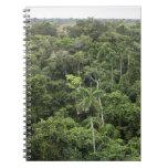 Vista aérea de la selva tropical del Amazonas Libros De Apuntes