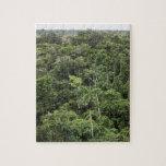 Vista aérea de la selva tropical del Amazonas Puzzles