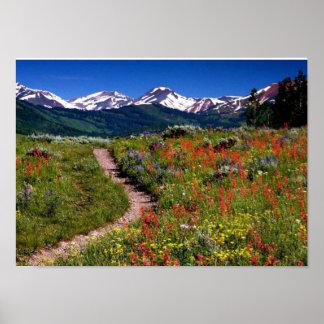 Vista de montañas y de flores para el amante de na poster