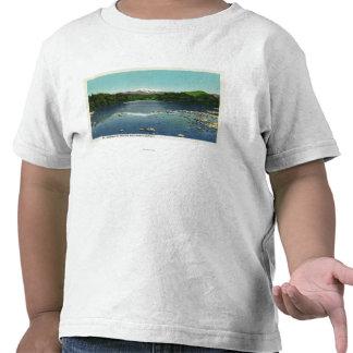 Vista del soporte Washington y el Saco Camisetas