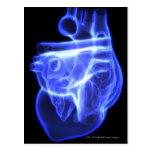 Vista luminescente del corazón humano postal