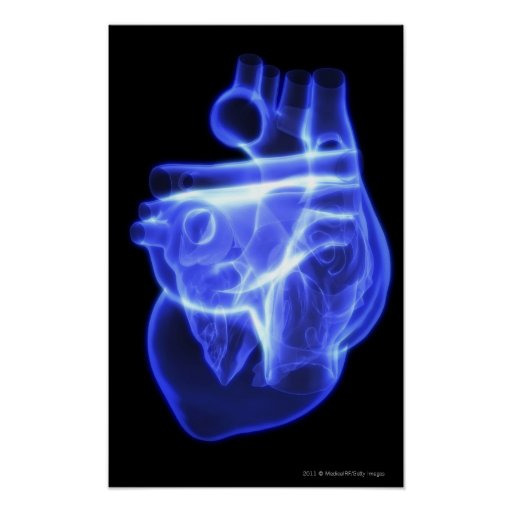 Vista luminescente del corazón humano poster