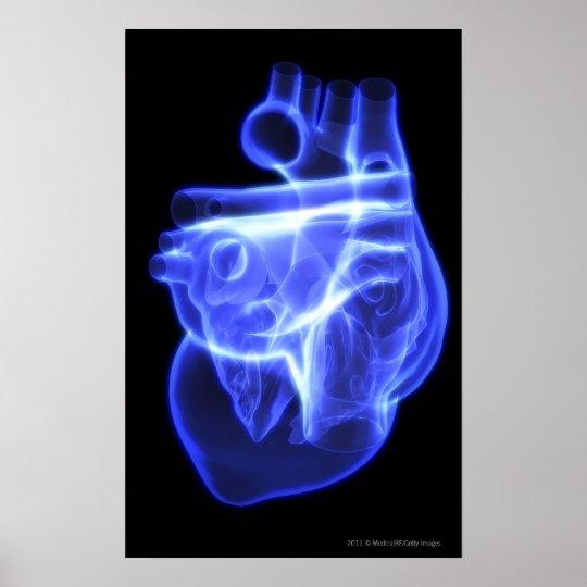 Vista luminescente del corazón humano póster