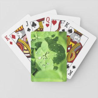 Viva en trébol barajas de cartas