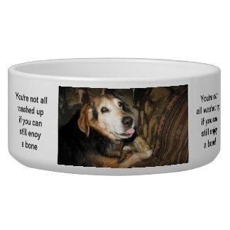 Vivaracho el beagle comedero para mascota