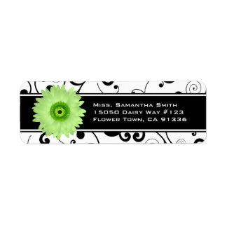 Voluta negra y blanca de la margarita verde del Ge Etiqueta De Remite