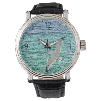 Vuelo de la gaviota sobre un mar reloj