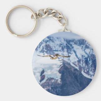 Vuelo patagón austral del pájaro llavero redondo tipo chapa