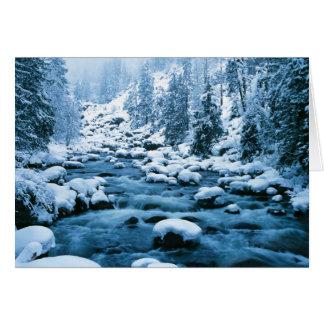 WA, bosque del Estado de Wenatchee, cascada Tarjeta De Felicitación