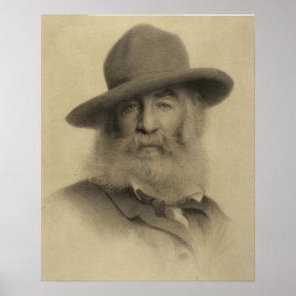 Walt Whitman: El buen poeta gris Póster