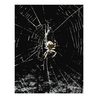Web de araña en la medianoche folleto 21,6 x 28 cm