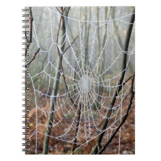 Web del cuaderno europeo de la foto de la araña de