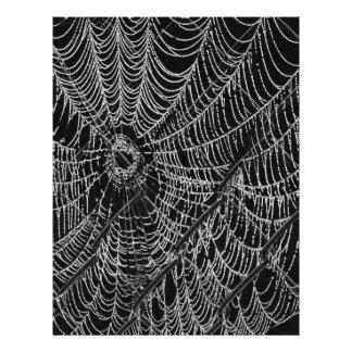 Web Tarjetones