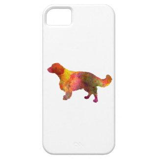 Welsh Springer Spaniel in watercolor Funda Para iPhone SE/5/5s