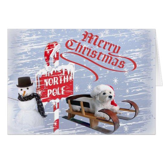 Westie @ el Polo Norte Tarjeta De Felicitación