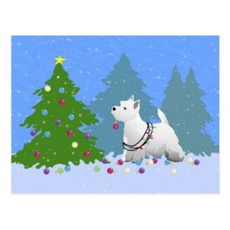Westie que adorna un árbol de navidad en el bosque postal