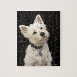 Westie (terrier del oeste de la montaña) con el cu puzzles