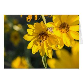Wildflower con la abeja tarjeta de felicitación