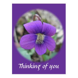 Wildflower violeta que piensa en usted postal
