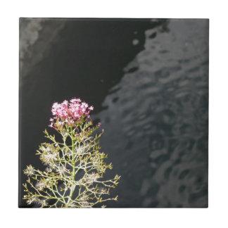 Wildflowers contra la superficie del agua de un azulejo de cerámica