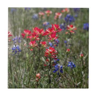 Wildflowers de la brocha india y del Bluebonnet de Azulejo De Cerámica
