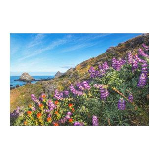 Wildflowers del Lupine y de la brocha Impresiones En Lona Estiradas