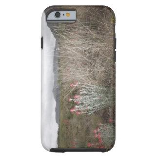 Wildflowers y plantas, Del Río, Tejas, los Funda De iPhone 6 Tough