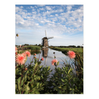 Windmill and flowers in Holland postcard Postal