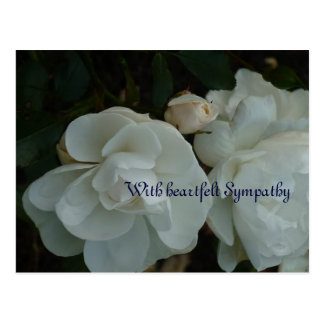 With heartfelt Sympathy - tarjeta de pésame Postal