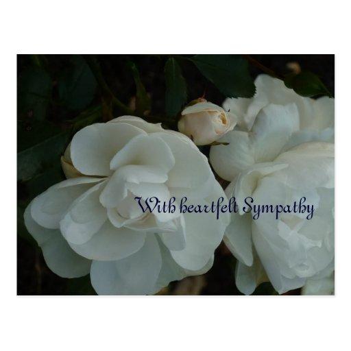 With heartfelt Sympathy - tarjeta de pésame Postales