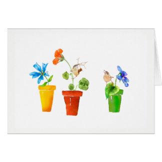 Wrens y macetas tarjeta pequeña