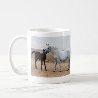 Yegua de Lipizzan y taza del potro