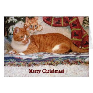 "Yo y mi tarjeta de Navidad del gato de la ""sombra"""