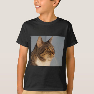 Yoda Camisas