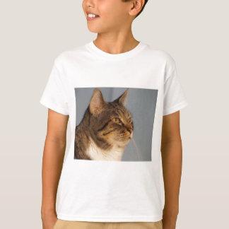 Yoda Camisetas