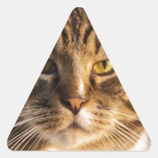 Yoda Pegatina Triangular