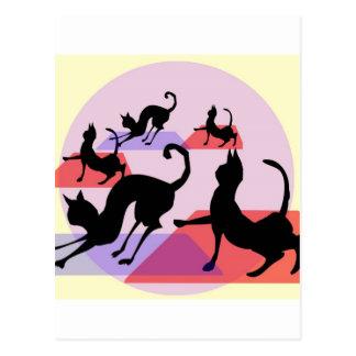 yoga del gato postal