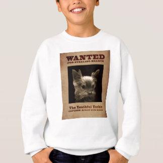 Yorkie joven quiso la camiseta del niño