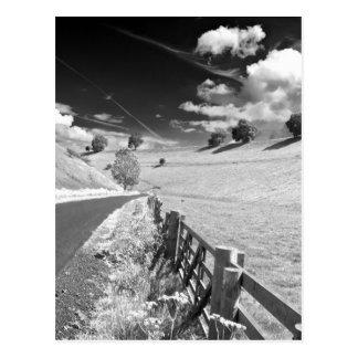 Yorkshire blanco y negro postal