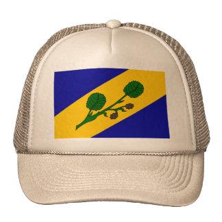 Zalsi, checo gorras